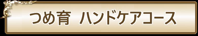 ネイルサロンLEEZ(リーズ)つめ育ハンドケアコース01