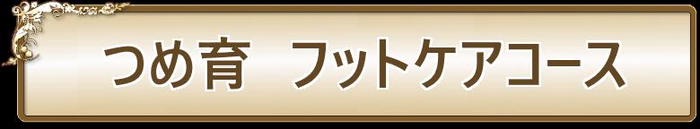 ネイルサロンLEEZ(リーズ)つめ育フットケアコース01